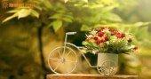 Tình yêu cung Bảo Bình và Bọ Cạp bền vững tới đâu?