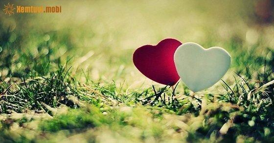 Tình yêu của họ luôn trong sáng và ngọt ngào