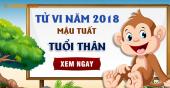 Xem bói tử vi năm 2018 cho người tuổi Thân