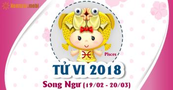 Xem bói tử vi năm 2018 cung hoàng đạo Song Ngư
