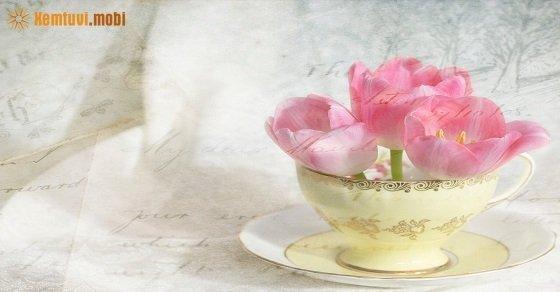 Tử vi hàng ngày 12 cung hoàng đạo thứ 4 ngày 2/5/2018