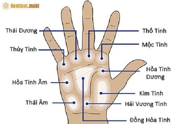 Xem bói gò Thái Âm trên bàn tay