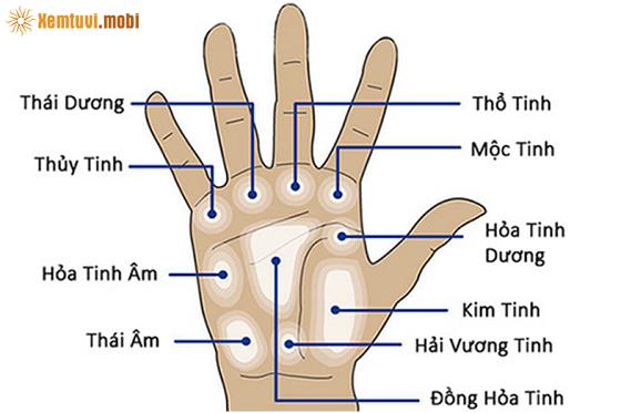 Vị trí gò mộc tinh – Vòng mộc tinh trên lòng bàn tay