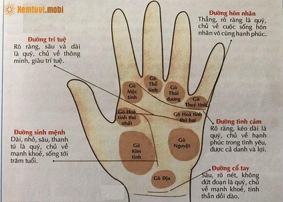 Ý nghĩa và vị trí gò Hỏa Tinh trên bàn tay