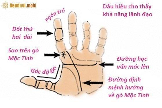 Xem bói gò mộc tinh trên bàn tay