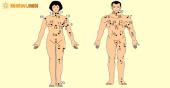 Xem bói nốt ruồi trên cơ thể phụ nữ, đàn ông đoán tính cách, vận mệnh