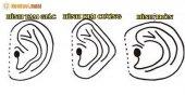 Xem tướng tai đoán tương lai - Nhân tướng học về đôi tai đẹp, giàu có