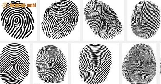 Vân tay trên các ngón tay thường không giống nhau ở mỗi người