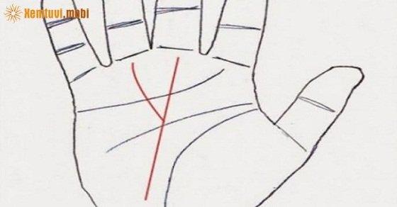 Ý nghĩa chỉ tay chữ M, tướng bàn tay chữ M