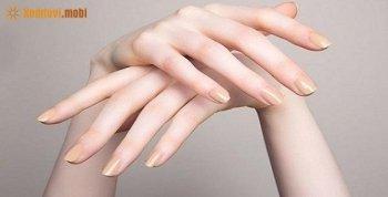Xem bói bàn tay nữ - Cách xem tướng bàn tay phụ nữ, con gái chi tiết