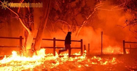 Chiêm bao thấy lửa cháy nhà mà bạn thoát được báo điềm gì?