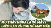 Nằm mơ thấy ngựa đánh số gì? Điềm báo giấc mơ lành tốt hay xấu?