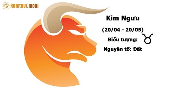 Tổng quan tử vi năm 2020 cung hoàng đạo Kim Ngưu