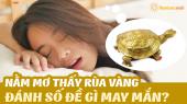 Mơ thấy rùa vàng đánh con gì? Giải mã giấc mơ thấy rùa vàng có điềm báo gì?