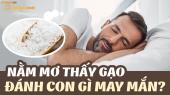 Mơ thấy gạo đánh con gì? Chiêm bao thấy gạo là điềm báo lành hay dữ?