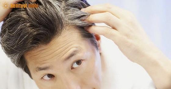 Xem tướng tóc đàn ông