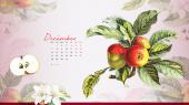 Tử vi tháng 12/2020 Đông phương của 12 con giáp